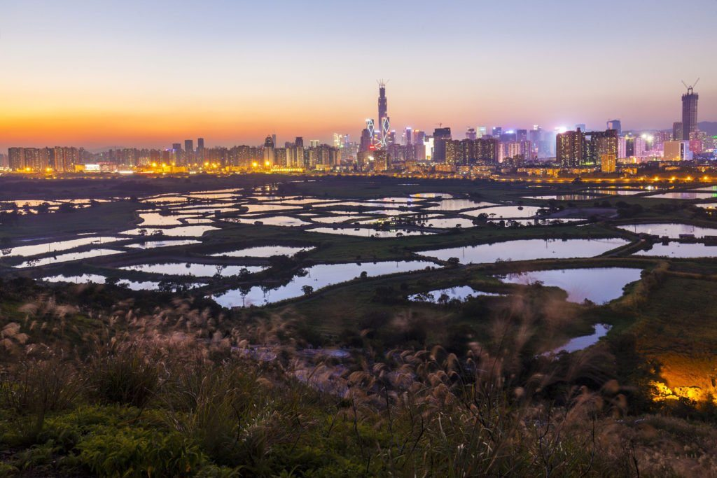 Setting up a Company in Shenzhen